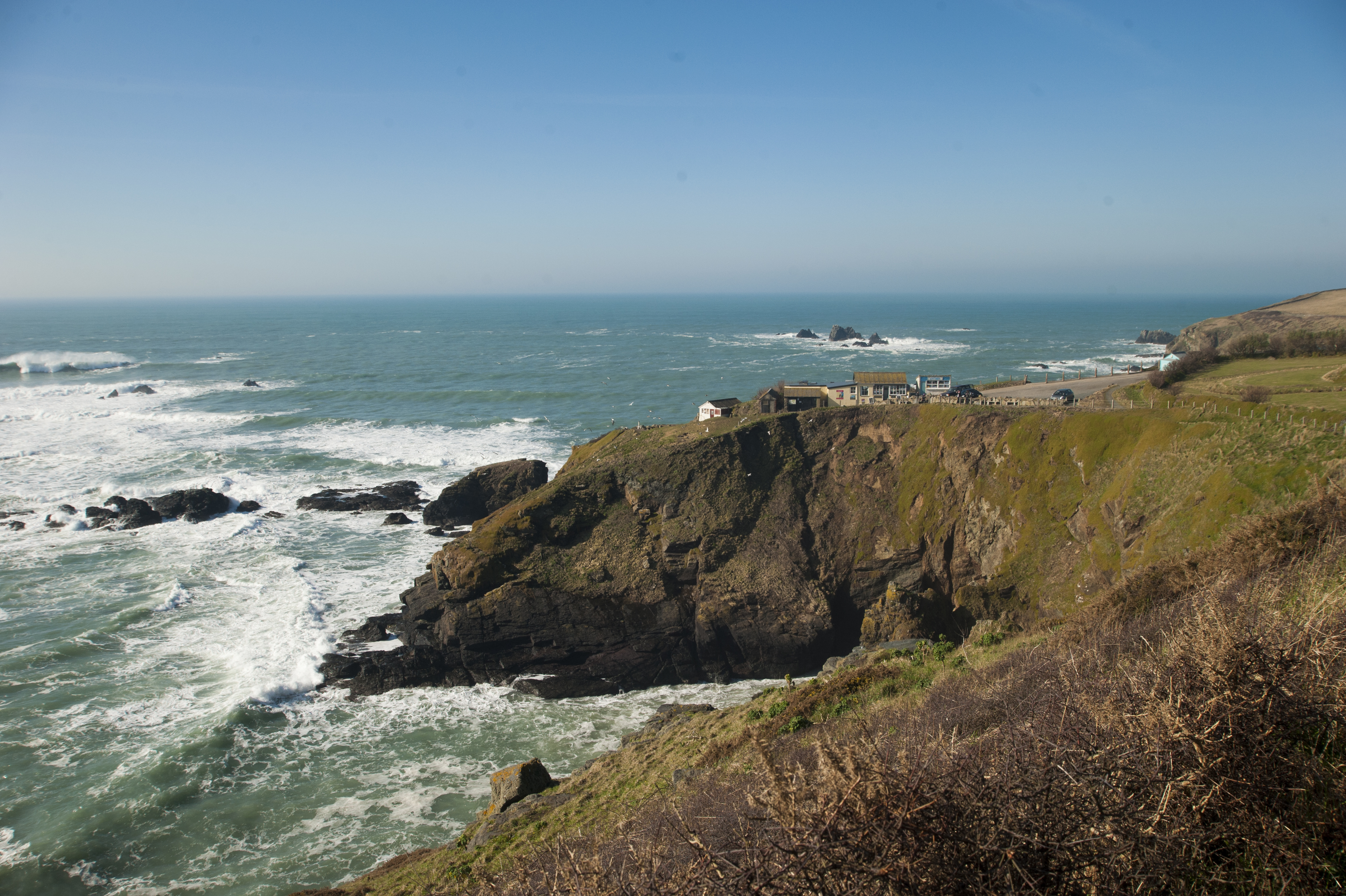 Places To Eat In Cornwall With Dogs