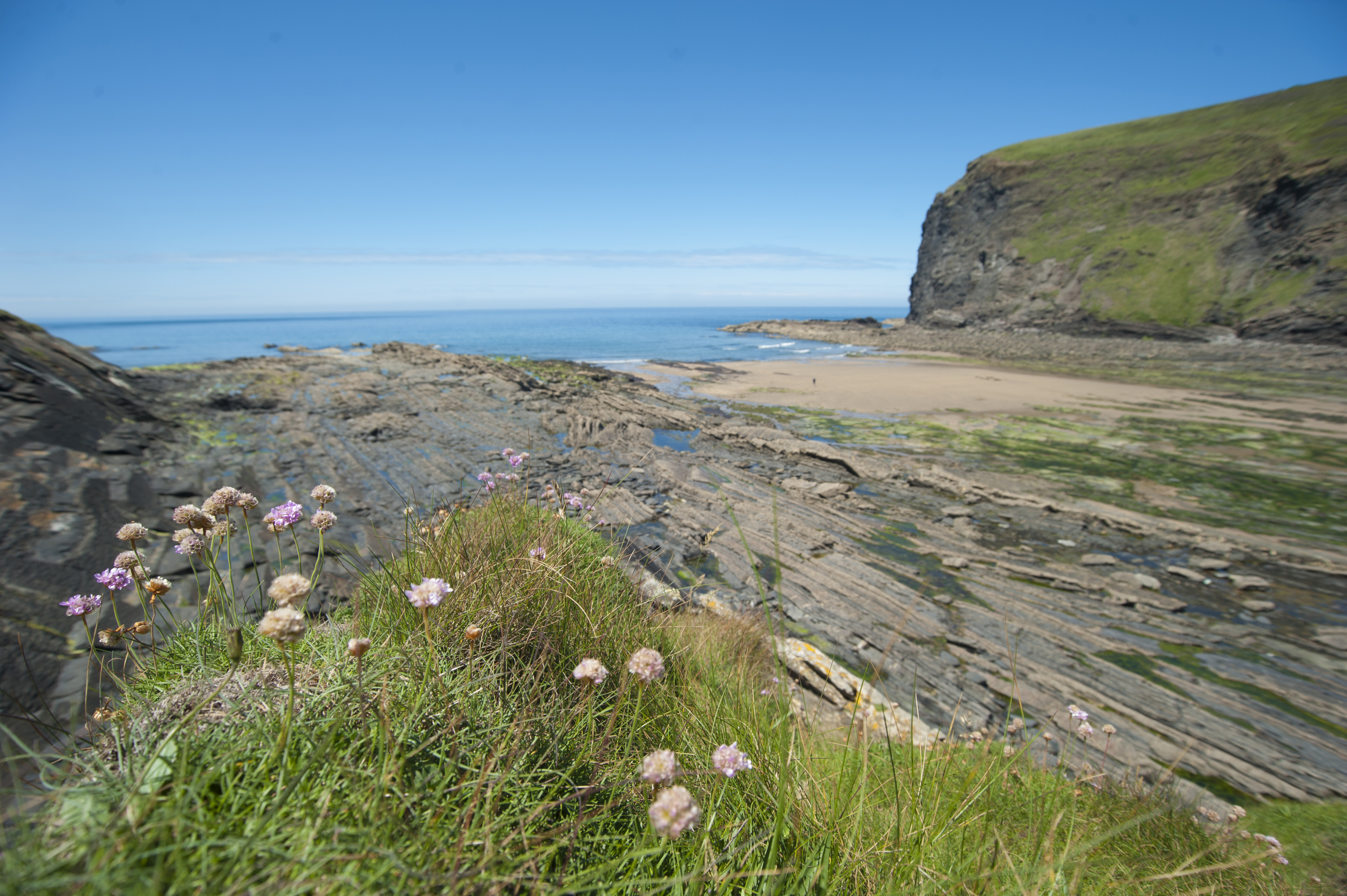 Crackington Haven North Cornwall An Essential Guide