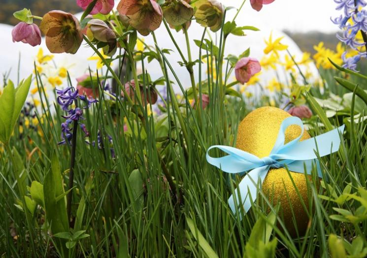 Easter Activities in Cornwall, things to do, family holiday, attractions, events