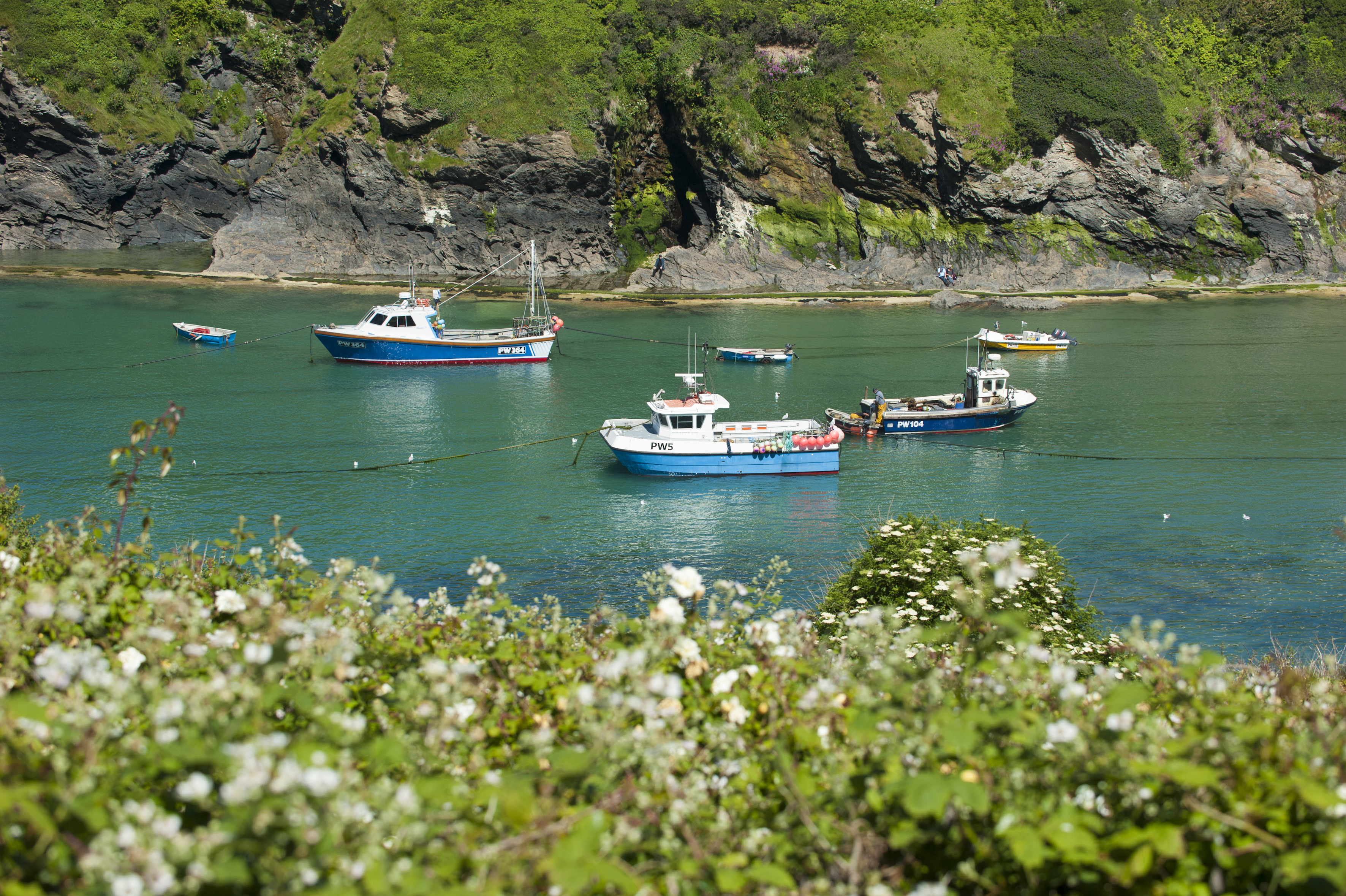 Holiday Cottages Port Isaac Mermaid Cottage Self Catering