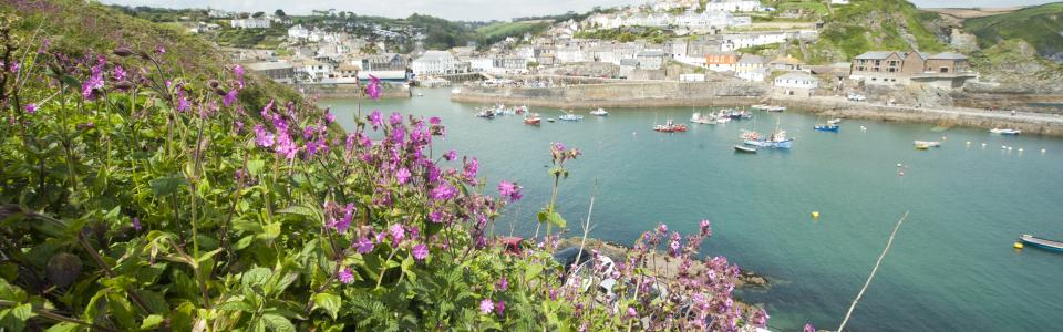 5 Star Holiday Caravan sites near the beautiful Mevagissey