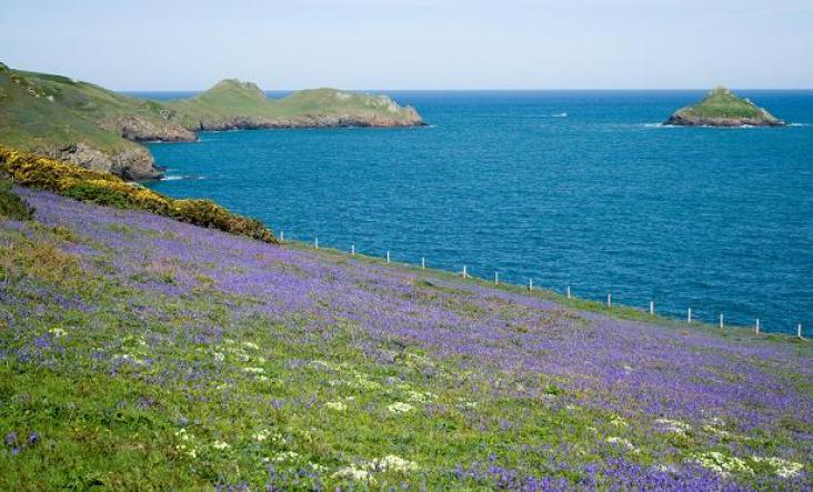 Toward Pentire Point | South West Coast Path | North Cornwall
