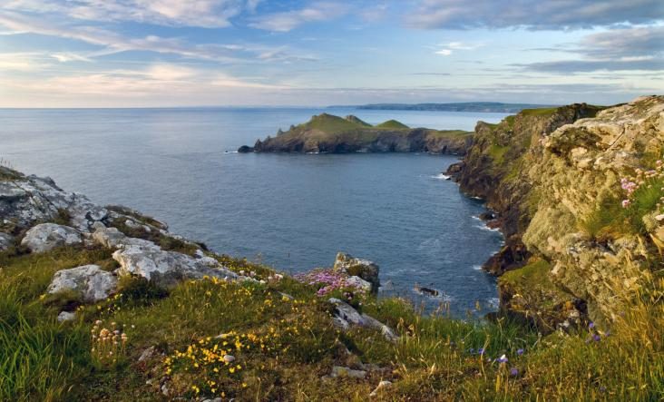 Evening view of The Rumps on the SWCP by David Carvey