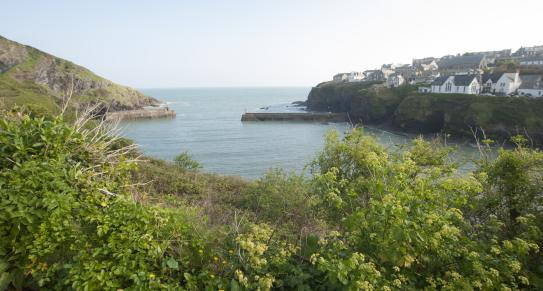 Port Isaac North Cornwall c Adam Gibbard