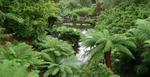 Gardens in Cornwall, Lost Gardens of Heligan, Pentewan, St Austell