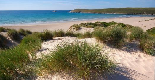 Crantock beach | Cornwall | Neil Cockman