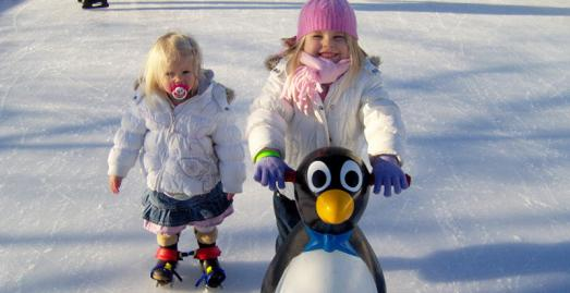 Eden at Christmas, Ice skating with the penguins, St Austell, Cornwall