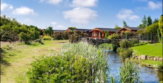 Holiday Park in Cornwall | River Valley Country Park | Near Penzance