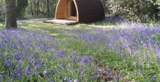 Lodges, caravan, camping and glamping in Cornwall | Ruthern Valley Holidays