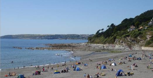 Is Seaton Cornwall Each Dog Friendly
