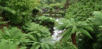 Gardens in Cornwall, attractions, places to visit, holiday