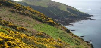 Areas of Outstanding Natural Beauty, AONB, countryside, coast, Cornwall