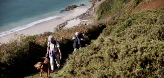 Dogs love Cornwall, dog friendly hotels & B&B's, Visit Cornwall, holiday