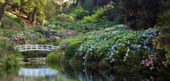 Trebah Garden, Falmouth, Visit Cornwall, things to do, attractions
