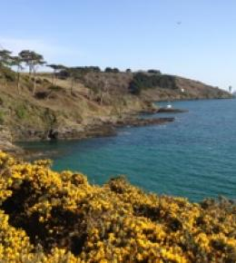 Coastal footpath across from St Mawes