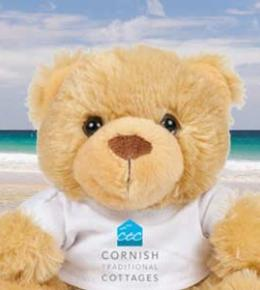 Free Teddy bear with May half term holidays