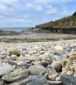 Port Gaverne Beach, near accommodation, sea views