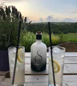 Stafford's Gin: Cornwall's first plough to bottle gin