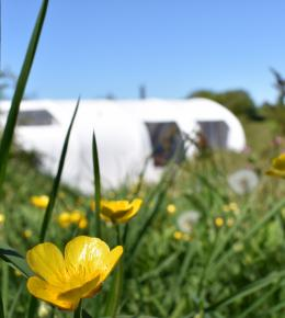 Glamping Pod North Cornwall