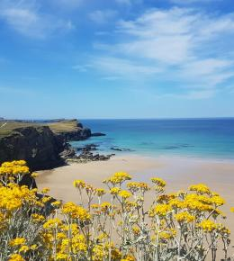 easter holiday hotel cornwall