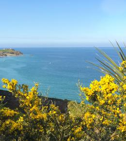 Spring over St Ives Bay