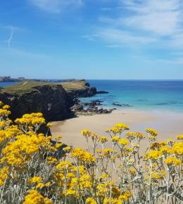 whipsiderry_beach_porth_newquay_cornwall