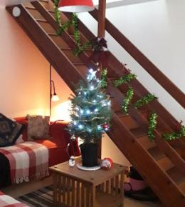 Interior of bungalow, living area, with Christmas tree.