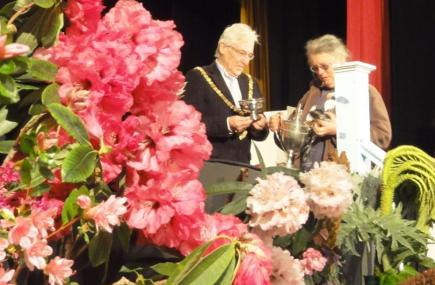 Falmouth Spring Flower Show   Cornwall
