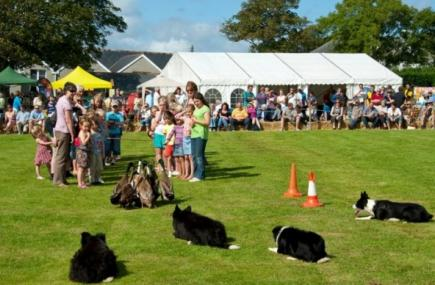 St Ewe Country Fair, St Austell
