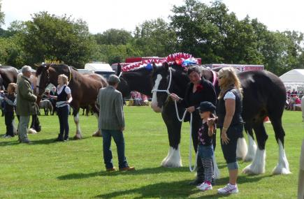 Tregony Heavy Horse Show, The Roseland, Cornwall