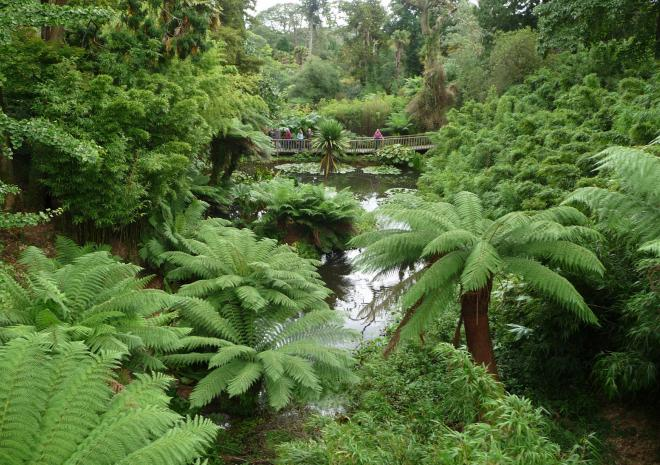 Lost Gardens Of Heligan St Austell Cornwall