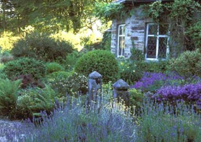 Gardens in Cornwall | Pinsla Garden and Nursery | Bodmin | Cornwall