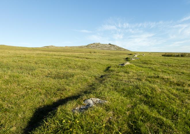 Rough Tor, Bodmin Moor, Cornwall