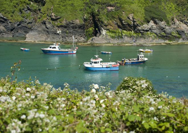 Port Isaac in North Cornwall c Adam Gibbard