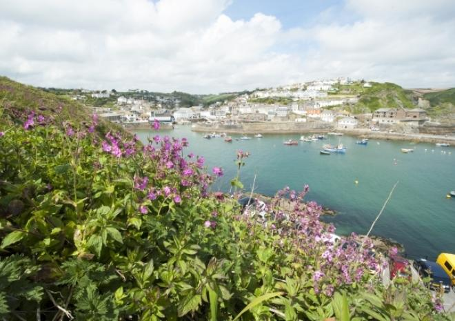 View of Mevagissey, Cornwall c Adam Gibbard/Visit Cornwall