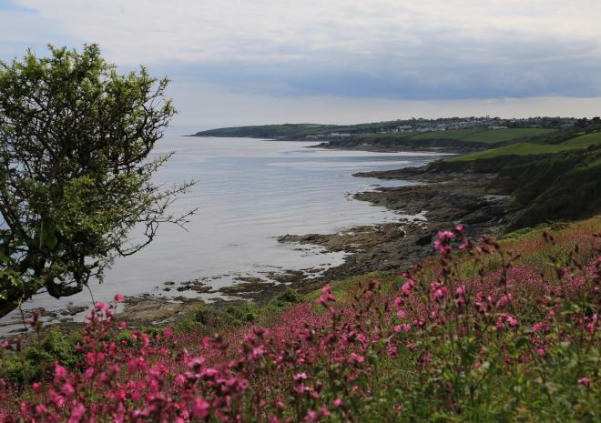 View of Gerrans Bay looking towards Portscatho