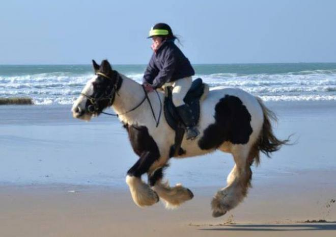 Horseriding in Cornwall | Reen Manor Riding Stables | Perranporth | Cornwall