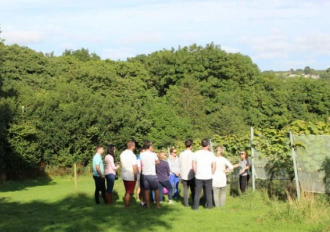 Trevibban Mill Vineyard & Orchards, Attractions, Cornwall
