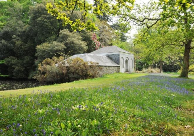 Antony Woodland Garden, Torpoint, Things to do, Gardens, Cornwall