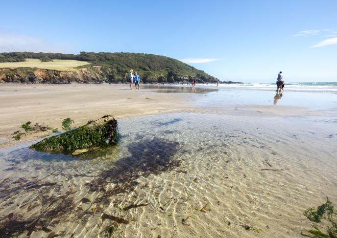 Porthluney Cove Beach, St Austell, South Cornwall