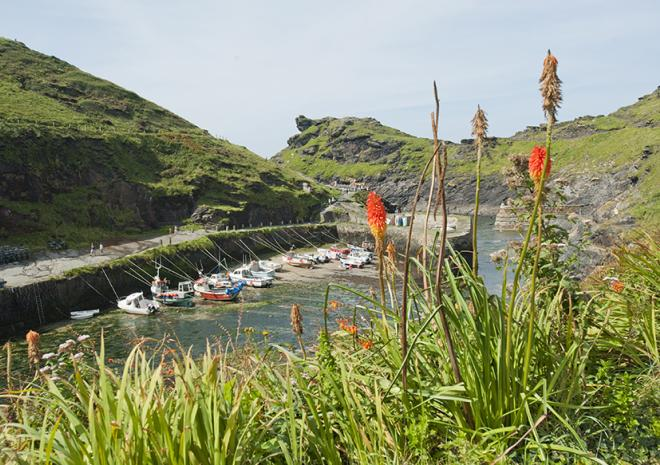 Boscastle at the northen end of the walk