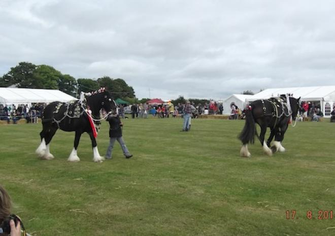 St Ewe Country Fair, What's on, St Austell, South Cornwall