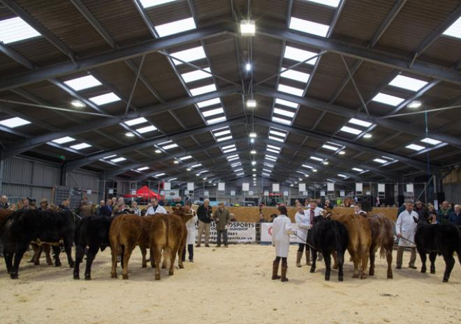 The Cornish Winter Fair, What's on, Cornwall, November 2017