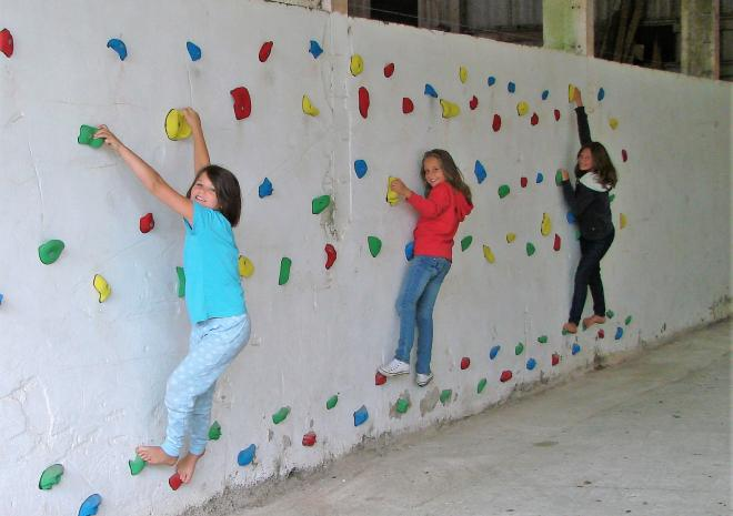 Enjoying our climbing wall
