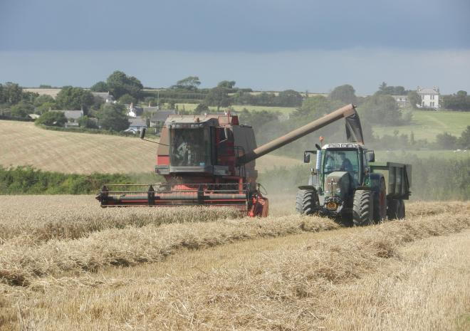 Harvesting time at Penhallow Farm with Pippin Cottage in the background