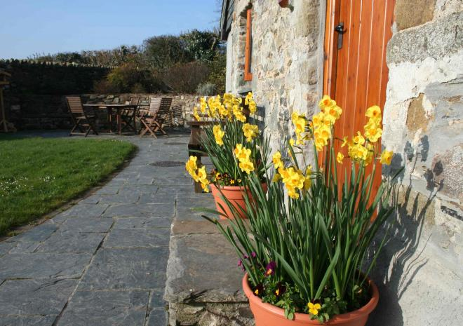 Springtime welcome at Gospenheale Barn