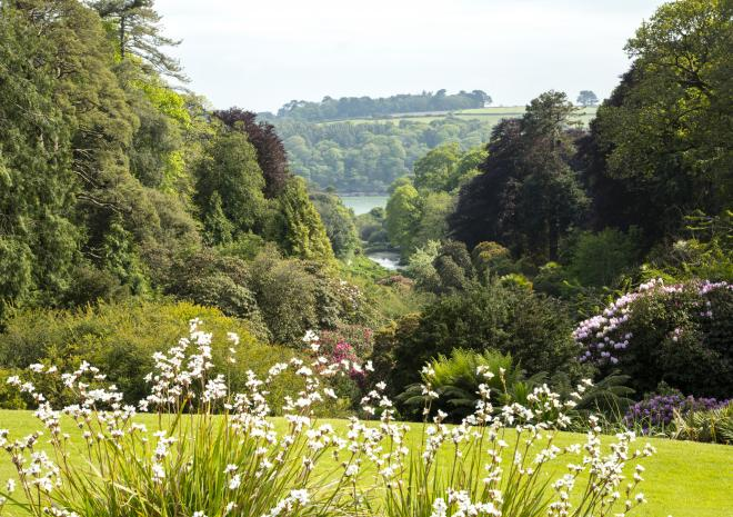 Trebah Gardens, Falmouth, South Cornwall