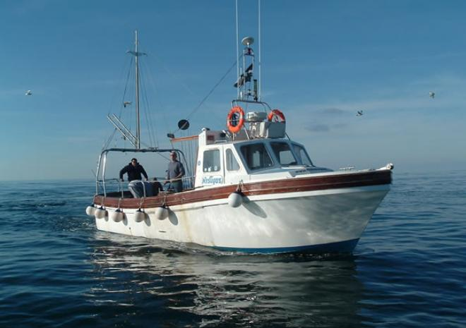 Fishing in Cornwall | FishNewquay | Newquay | Cornwall