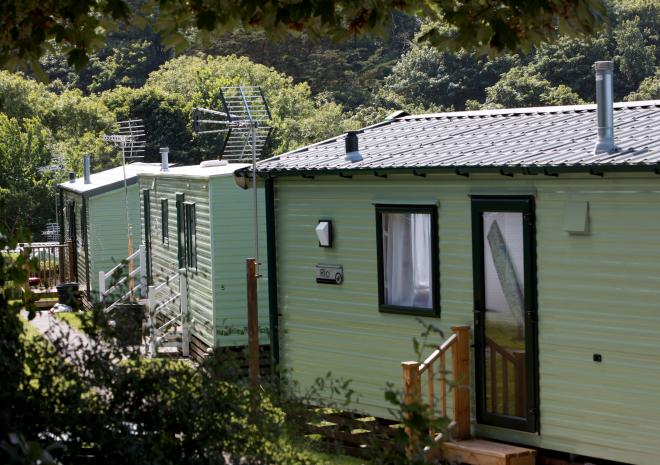 Holiday Caravans nestled in our gorgeous wooded valley