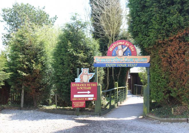 Things to do in Cornwall   Screech Owl Sanctuary   St Columb   Cornwall